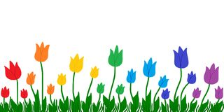 Rainbow Colors Tulips. Spring background with green grass and tulips in rainbow colors Stock Photos