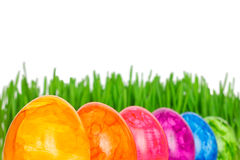 Rainbow coloured Easter Eggs grass Royalty Free Stock Photo