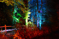 Rainbow Coloured Forest Walk at Night. Multi-coloured spotlights illuminate a forest walk at night for the Diwali Festival of Light at Robin Hill on the Isle of Stock Photography