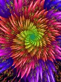 Fractal firework. Rainbow coloured fractal firework abstract image Royalty Free Stock Photo