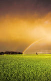 Rainbow Colours. Rainbow in a fresh green field Royalty Free Stock Photography