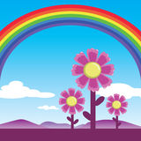 Rainbow and cosmos flowers Stock Photo