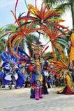 Rainbow Costume stock image