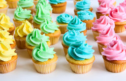 Rainbow cupcakes Royalty Free Stock Images