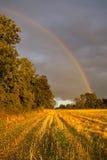 Rainbow da un campo Fotografie Stock Libere da Diritti