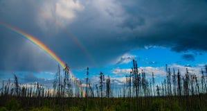 Rainbow Dark clouds Blue skies