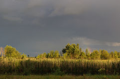 Rainbow on a dark gray sky after a thunderstorm at sunset Stock Photography