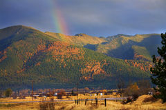Rainbow del Montana dell'oro Fotografie Stock