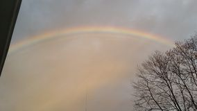 Rainbow delight royalty free stock photo