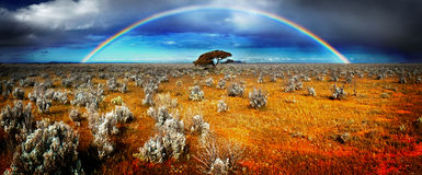 Rainbow Desert Royalty Free Stock Images