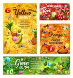 Rainbow diet vitamins, healthy food nutrition. Rainbow diet healthy food and vitamins in fruits and vegetables. Vector color diet organic and natural nutrition vector illustration