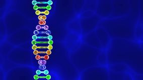 Rainbow DNA (deoxyribonucleic acid) with blue background stock video footage