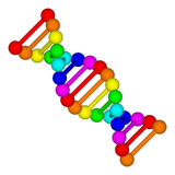 Rainbow DNA logo - deoxyribonucleic acid Royalty Free Stock Photography
