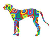 Rainbow Dog 3 Royalty Free Stock Images