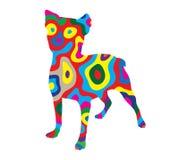Rainbow Dog 2 Stock Photo