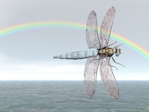 Rainbow Dragonfly Stock Photos