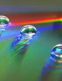 Rainbow drops. Drops of water on a reflecting CD surface Stock Images