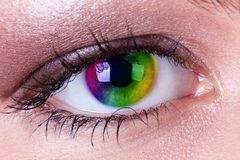 Rainbow eye. Close up of a rainbow eye Royalty Free Stock Image