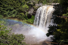 Rainbow Fall in New Zealand Northland Stock Photography