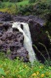 Rainbow Falls, Hawaii. View of Rainbow Falls spilling over a lava rock ledge on the Big Island of Hawaii stock photo