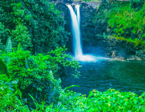 Rainbow falls, near Hilo, Hawaii (P) Stock Photography