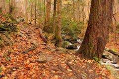 Rainbow Falls Trail Stock Photography