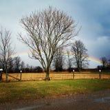 Rainbow farm. Rainbow at the farm, with tree. Pretty royalty free stock photo