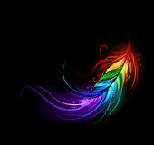 Rainbow feather. Artistically painted rainbow feather on a black background