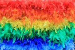 Rainbow feathers background Stock Images