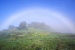 Rainbow In A Field. In Ojai, California royalty free stock photo