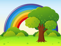 Rainbow field with tree in park. Illustration Royalty Free Stock Image