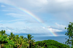 Rainbow in Fiji. Rainbow and palm trees at Savusavu Bay, Fiji Islands stock photo