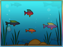 Rainbow Fish Aquarium Background. Rainbow fish swimming around in fish aquarium with bubbles and blue water Royalty Free Stock Photos