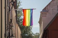 The  Rainbow Flag on a Flagpole Stock Photos