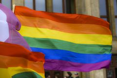 A rainbow flag fluttering in the wind.  stock photos