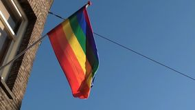 Rainbow flag waving stock video footage