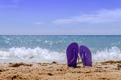 Rainbow Flip Flops. Purple pair of flip flops sticking up on a sandy beach with water and waves crashing on the beach Stock Image