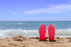 Rainbow Flip Flops. Orange pair of flip flops sticking up on a sandy beach with water and waves crashing on the beach stock photos