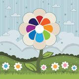 Rainbow Flower Stock Images
