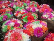 Rainbow flower arbour Royalty Free Stock Photos