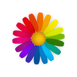 Rainbow flower. Colourful flower with different colours petals. Vector creative concept royalty free illustration