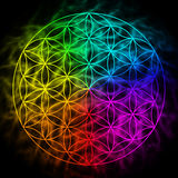 Rainbow flower of life with aura. Symbol of sacred geometry royalty free illustration