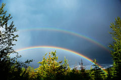 Rainbow and forest. A double rainbow above the trees, Alberta, Canada Royalty Free Stock Photography