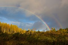 Rainbow and forest landscape Stock Photo