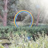 Rainbow in the forest royalty free stock image