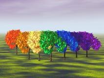 Rainbow a forma di dell'albero Fotografia Stock Libera da Diritti
