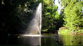 Rainbow in the fountain. The Botanical Garden is located across the street from Nantes Railway Station stock video