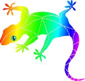 Rainbow Gecko Vector graphic Lizard wallpaper vector illustration