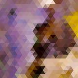 Rainbow geometric autumn background card. Royalty Free Stock Photography