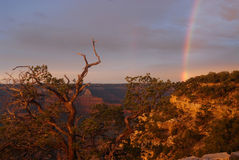 Rainbow at Grand Canyon royalty free stock images